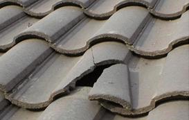 Elegant Cracked Tile