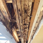 Support Beam Replacement in Boca Raton