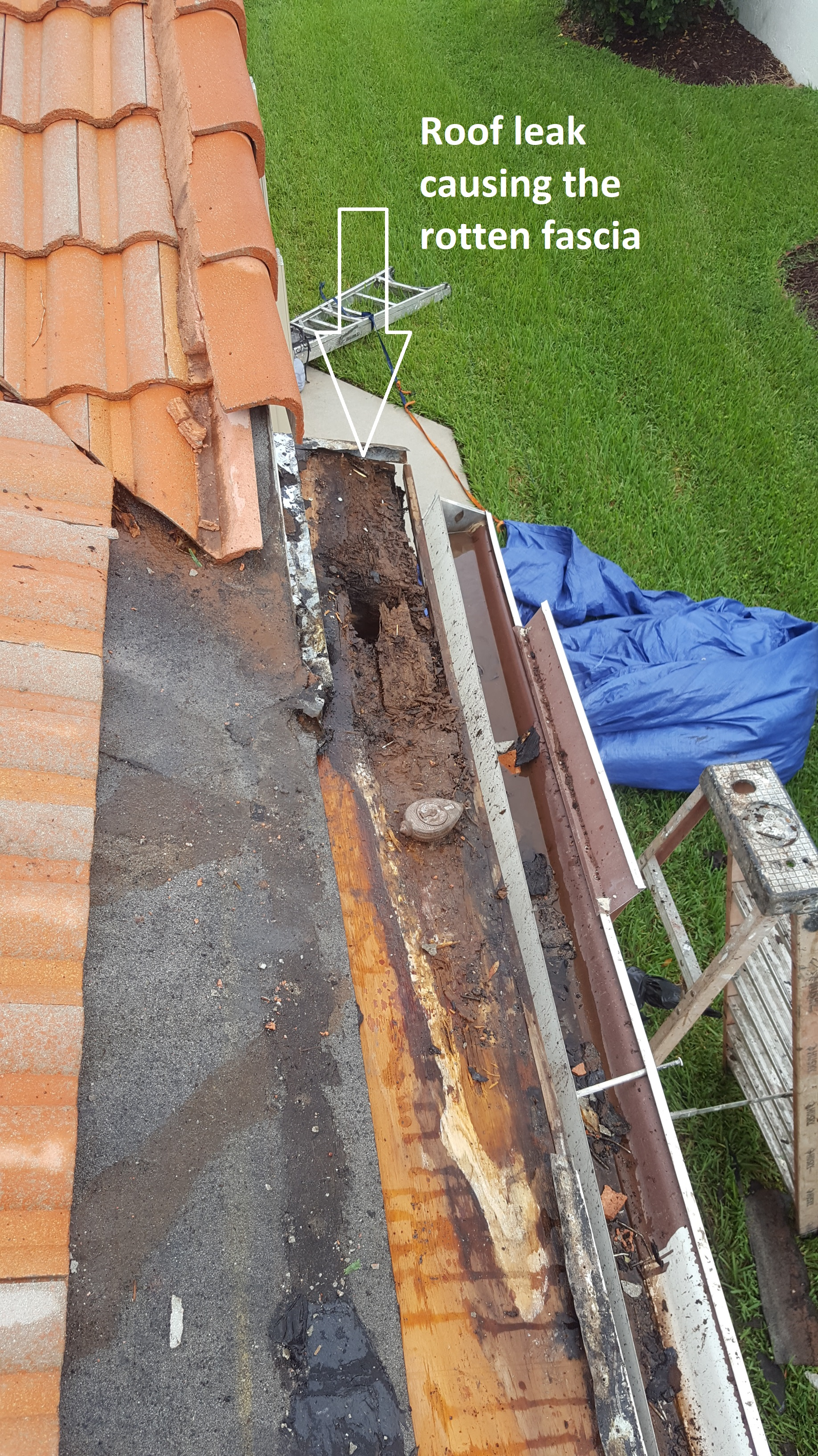 Rotten Fascia And Soffit Repair General Contractor In