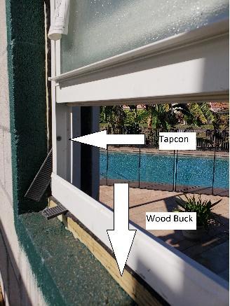 buck in window
