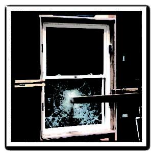 impact window or hurricane shutter