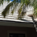 Tile Roof Repair for Mr. C in Palm Beach Gardens